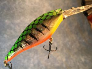 Fire Glass Tiger With Fiber Eyes Berkley Flicker Shad 2