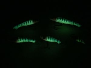 Hotty Eyelash Glow Tiger Rapala Jigging Rap 7