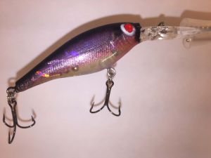 Natural Rainbow Smelt With Fiber-Eyes Berkley Flicker Shad 2